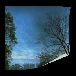 Adesivo de Vitrine Fundo Branco 4x0 Brilho Sem acabamento